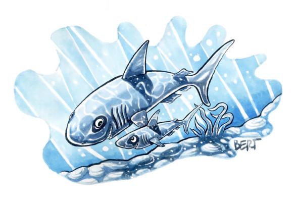 Famiglia di squali - Illustrazione per Erasmo - Quotidiano per bambini