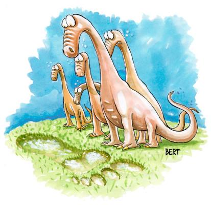 Grandi mammiferi - Copertina disegnata per Erasmo - Quotidiano per bambini