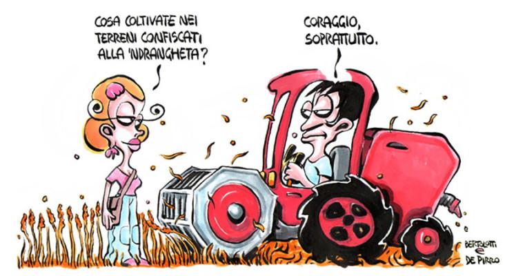 Terreni Ndrangheta - Linus